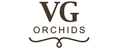 VG Orchids